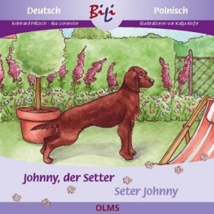 Dokumentbild Johnny der Setter / Seter Johnny